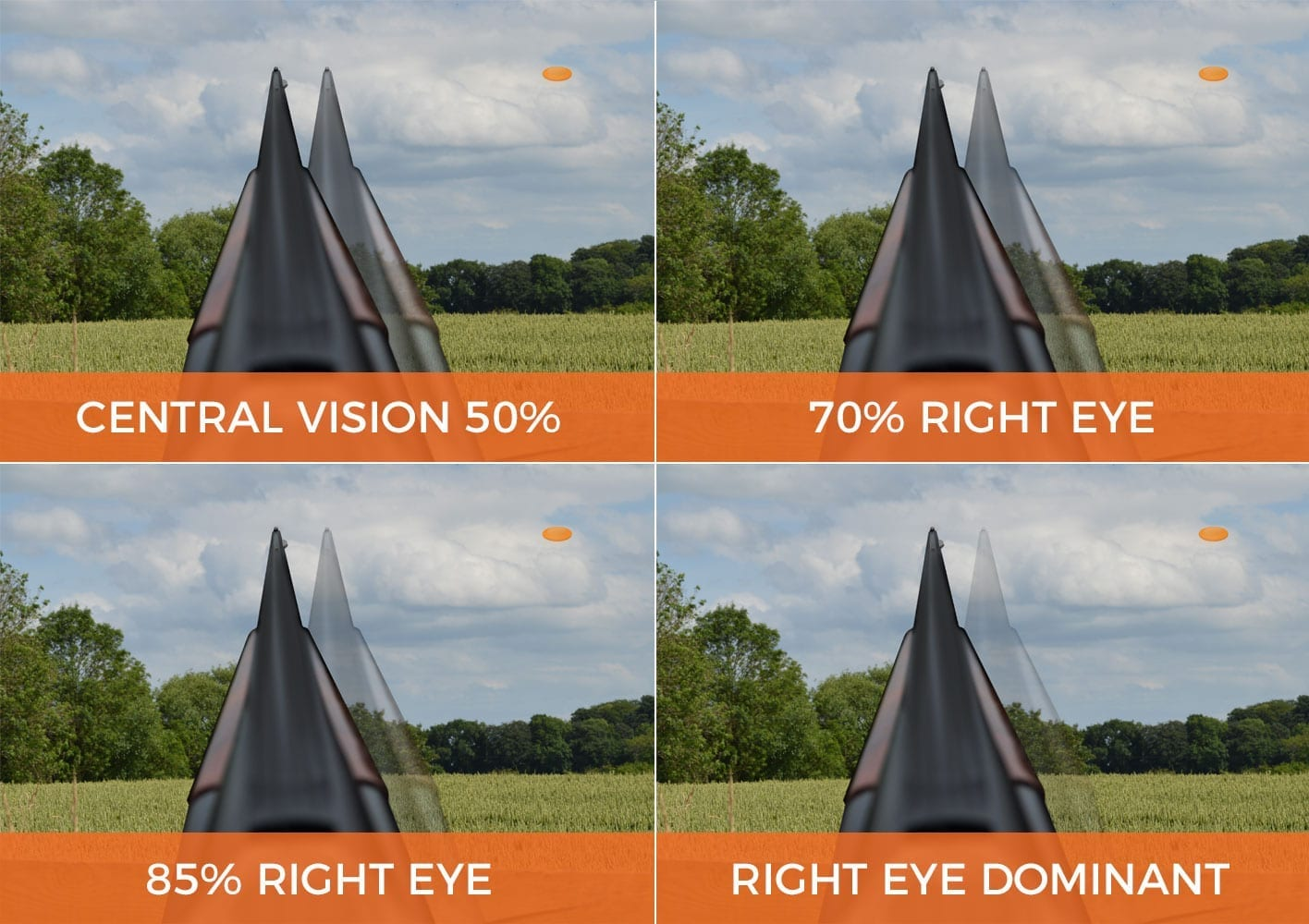 controlling eye dominance with the SP